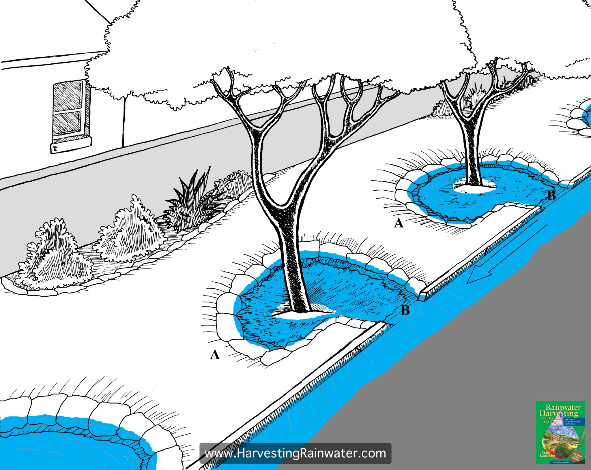 Fig. 1. Eddy or backwater basins. The upper edge of the farthest-downstream section of the basin (A) must be higher (ideally at least 4 inches [10 cm] higher) than the basin's curb-cut, or curb-core, inlet (B) to ensure pooling water calmly backs up to the inlet. Arrow denotes water flow.